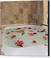 Tub Of Hibiscus Canvas Print by Shane Bechler