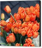 Tulips Canvas Print by Leslie Leda