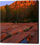 Twilight Cathedral Canvas Print by Mike  Dawson