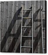 Two Ladders Leaning Against A Wooden Wall Canvas Print by Meera Lee Sethi