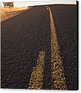 Two Lane Road Between Fields Canvas Print