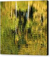 Two Palms Reflected In Water Canvas Print by Rich Franco