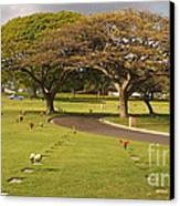 Two Trees Canvas Print by Silvie Kendall