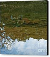Underwater Landscape Canvas Print by Lisa Holmgreen