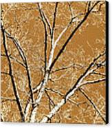 Untitled Tree Canvas Print by Carrie Kouri