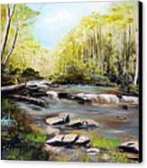 Upstate South Carolina Trout Stream Canvas Print by Phil Burton