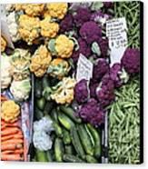 Variety Of Fresh Vegetables - 5d17900 Canvas Print