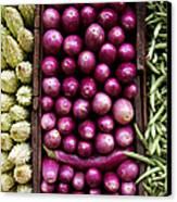 Vegetable Triptych Canvas Print by Jane Rix