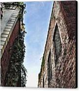 Vertigo Canvas Print by Jan Amiss Photography
