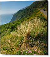 View From The Pacific Coastal Highway Canvas Print by Steven Ainsworth