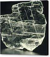 View Of A Sample Of Selenite, A Form Of Gypsum Canvas Print by Kaj R. Svensson