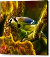 Visions Of A Blue Jay Canvas Print