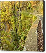 W Road In Autumn Canvas Print