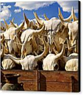Wagon Full Of Animal Skulls Canvas Print by Garry Gay