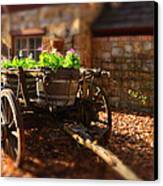 Wagon Of Flowers Canvas Print by Andrew Dickman