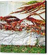 Wall Of Fall Canvas Print by Todd Sherlock