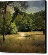 Wandering Path I Canvas Print