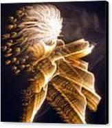 Warrior In The Night Canvas Print by Dean Bennett