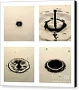 Water Drop Canvas Print by Raul Gonzalez Perez