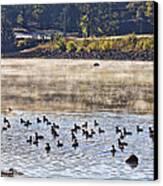 Water Fowl At Lake Wilhelmina Arkansas Canvas Print