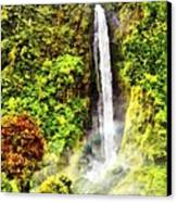 Waterfall Canvas Print by Vidka Art