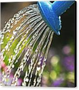 Watering Flowers Canvas Print by Elena Elisseeva