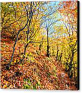 Way To The Chapel Canvas Print