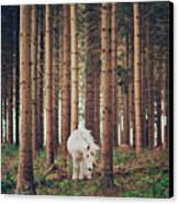 White Horse In The Wood Canvas Print by Julia Davila-Lampe