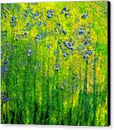 Wildflower Impression By Jrr Canvas Print by First Star Art