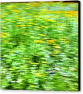 Wildflowers And Wind 2 Canvas Print by Skip Nall