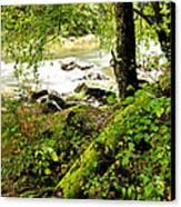 Williams River Canvas Print by Thomas R Fletcher