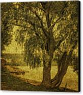 Willow At The Lake. Golden Green Series Canvas Print by Jenny Rainbow