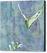 Winging It Canvas Print by Betty LaRue