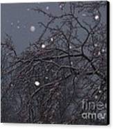 Winter Night Canvas Print by Sacred  Muse