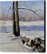 Winter Solace Canvas Print by Cindy Plutnicki