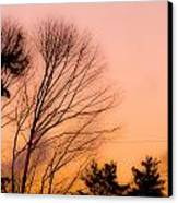 Winter Sunrise Canvas Print by Laurie Breton