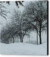 Winterlude Canvas Print by Shawn Hughes