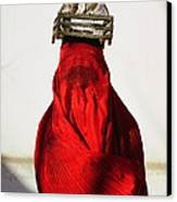 Woman Draped In Red Chadri Carries Canvas Print by Thomas J Abercrombie