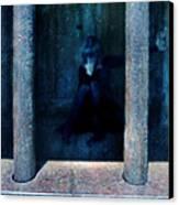 Woman In Jail Canvas Print by Jill Battaglia