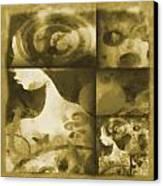 Wondering 3 Canvas Print by Angelina Vick