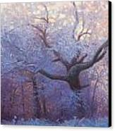 Wonderland Canvas Print by Jonathan Howe