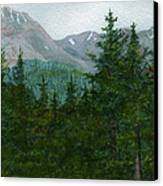 Woodland Overlook Canvas Print by Vikki Wicks