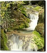 Woodland Waterfall Canvas Print by Victoria Hillman