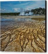 Yellowstone Blood Vessels Canvas Print by Dan Mihai