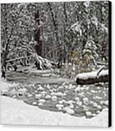 Yosemite Winter Canvas Print by Heidi Smith