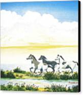 Indian Ponies Canvas Print