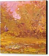Rural Farmstead  South Carolina  Usa Canvas Print