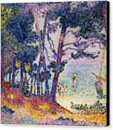A Pine Grove Canvas Print by Henri-Edmond Cross