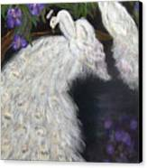 Albino Peacocks Canvas Print