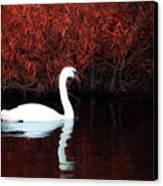 Along The Shores Of Avalon Canvas Print
